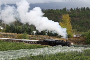 Steam Train at Dirty Laundry Winery
