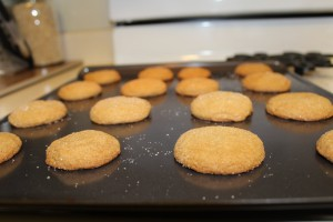 RECIPE: The best egg-free ginger snaps EVER